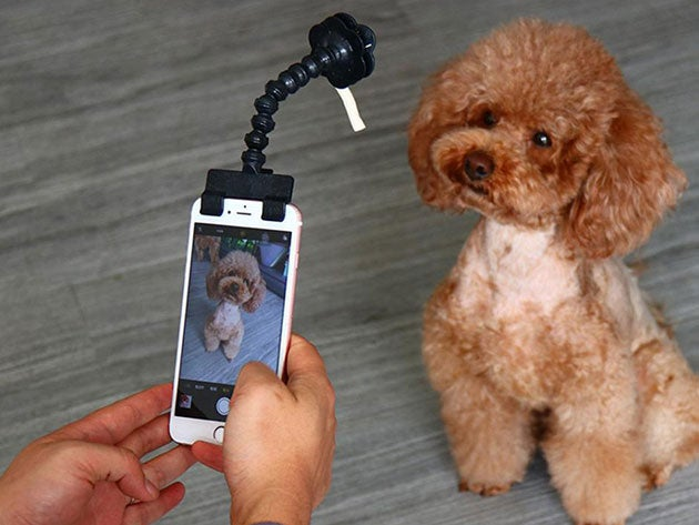 Adjustable Pet Selfie Smartphone Attachment