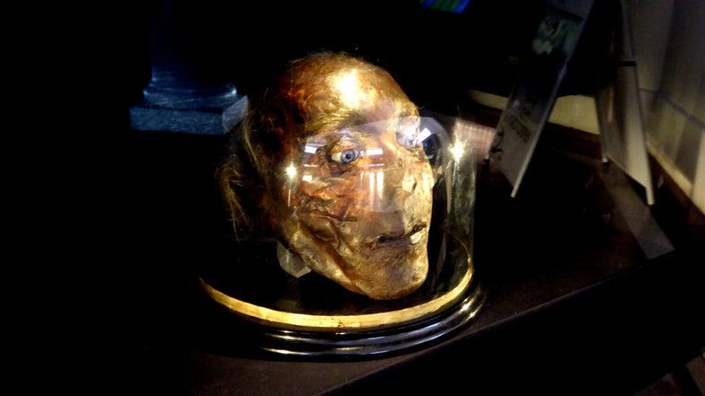The mummified, severed head of English philosopher Jeremy Bentham