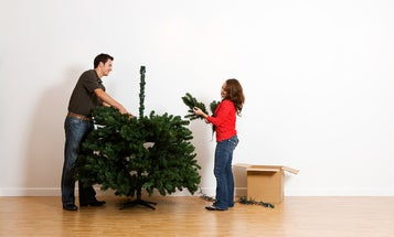 Your Christmas tree's environmental impact has nothing to do with whether it's real or fake