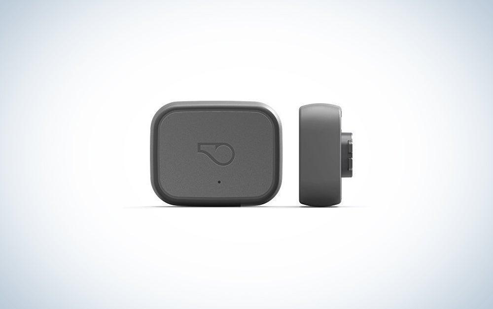 Whistle 3 GPS tracker