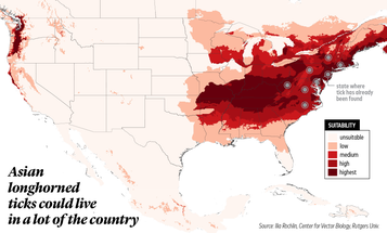 This map shows where the invasive Asian longhorned tick could spread in the U.S.