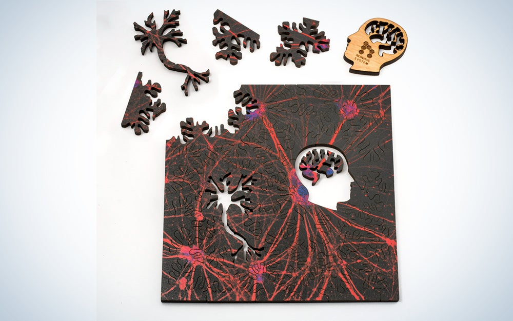 Neural Network Puzzle