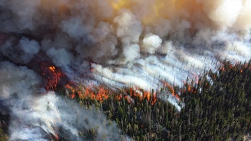 Wildfire from above