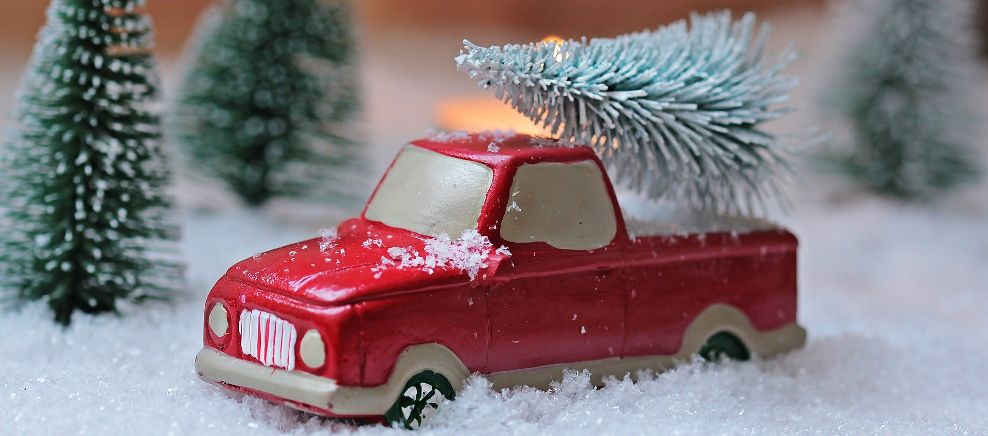 A toy truck carries a small Christmas tree