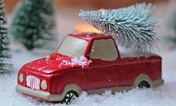 Get rid of your Christmas tree in the most environmentally-friendly way