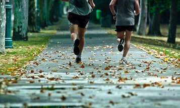 Heart rate monitors to track your vitals while on the run