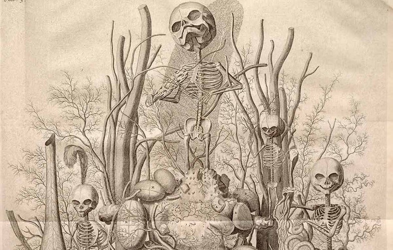 The weirdest things we learned this week: baby skeleton art, zombie presidents, and solar-powered telegraphs