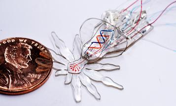 Itsy bitsy spider robots might crawl around inside you one day