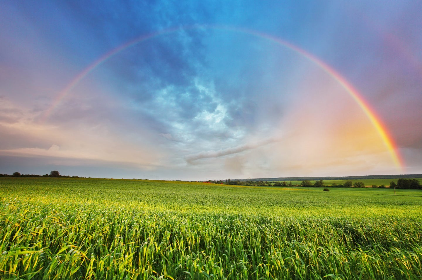How is a rainbow formed?