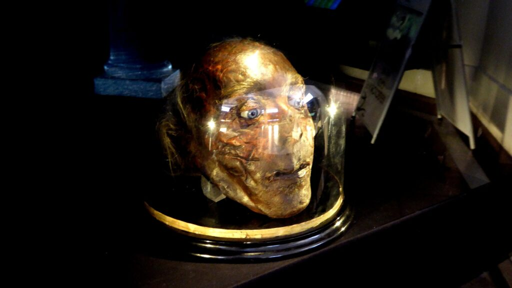 a severed head in a case