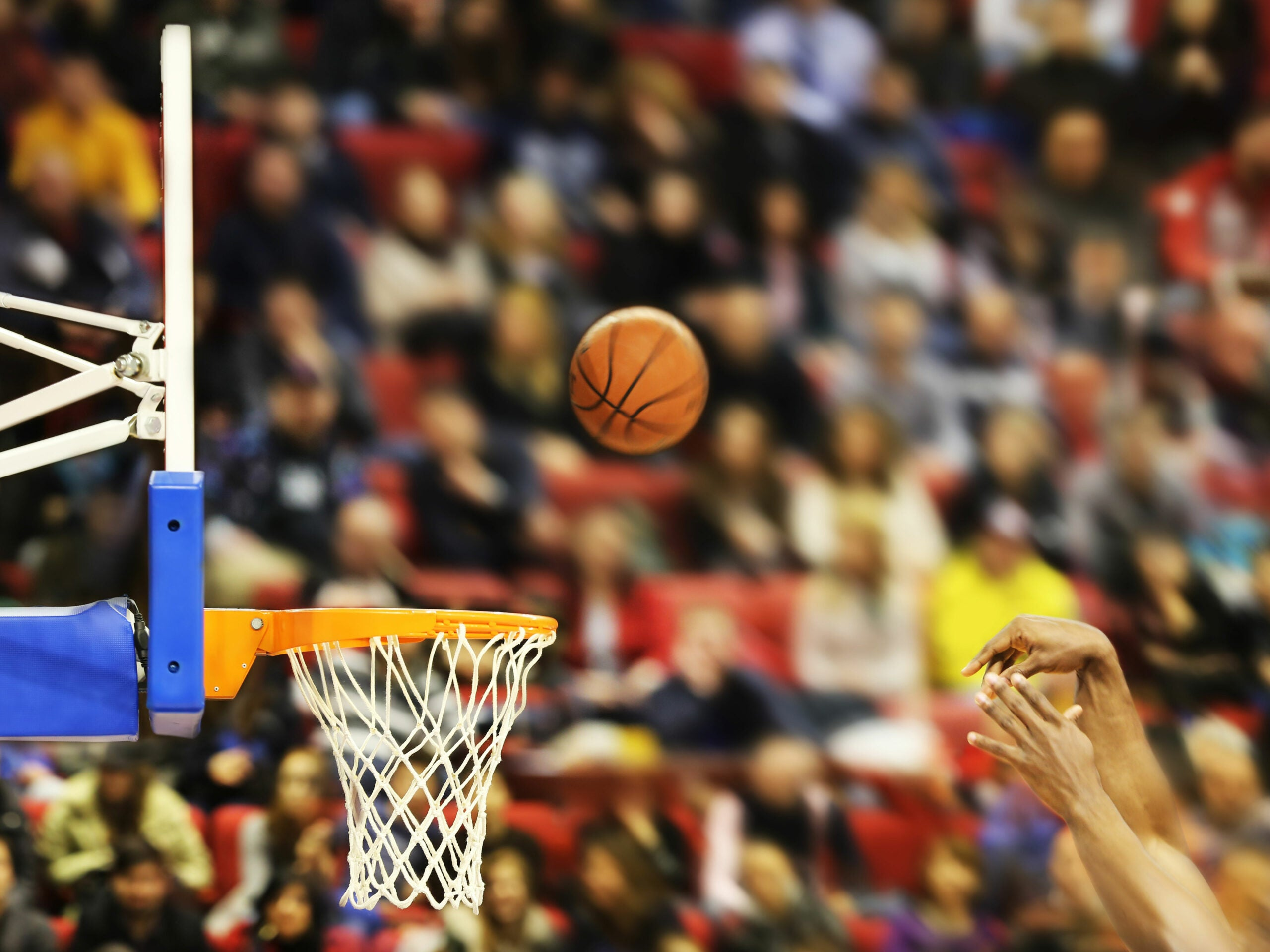 Pro basketball players' synchronous movements might help us predict the next NBA champ