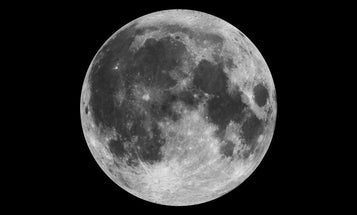 Tonight's pink supermoon may surprise you