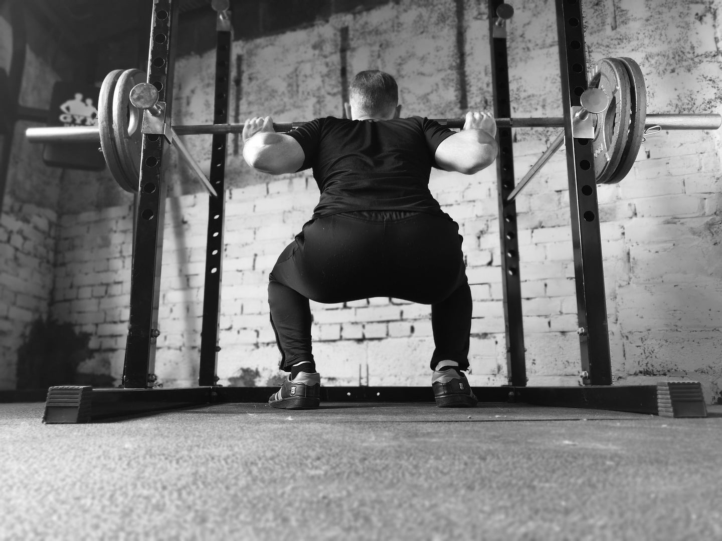 squat barbell muscle