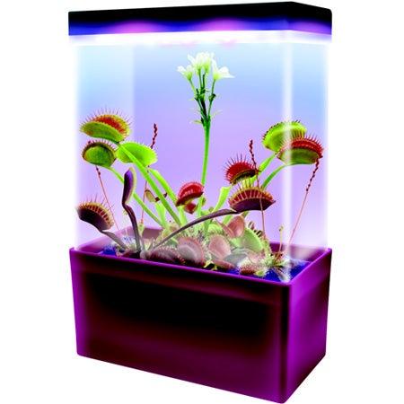 Carnivorous Creatures LED Light Cube