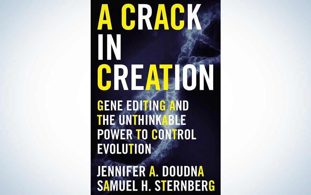crack in creation