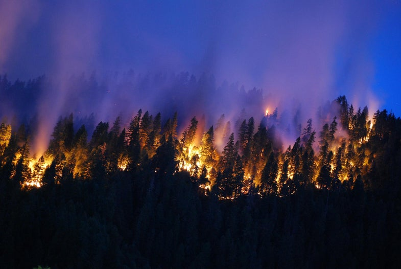 This is how much of the world is currently on fire