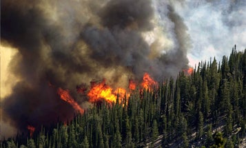 Humans are responsible for the vast majority of wildfires in the U.S.