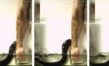 One scientist's truly shocking quest to understand eels