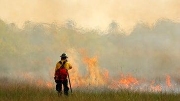 fireman standing near smoke