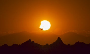 How to photograph the solar eclipse: The only guide you need