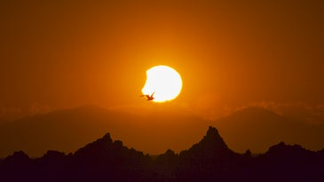 photographing the eclipse