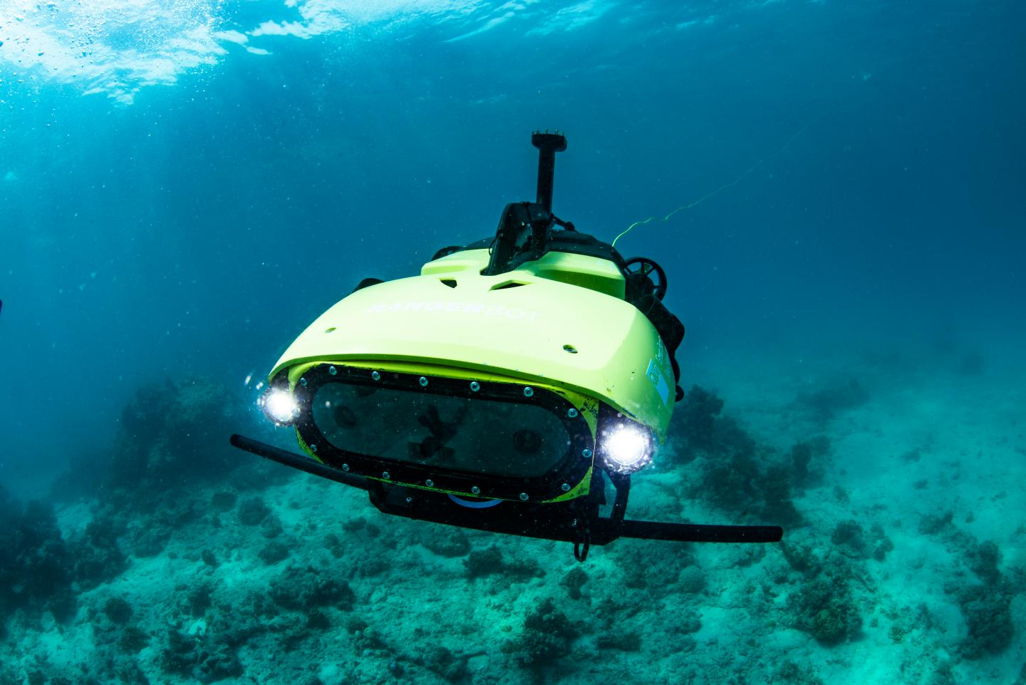 This robot plants heat-resistant corals to save endangered reefs