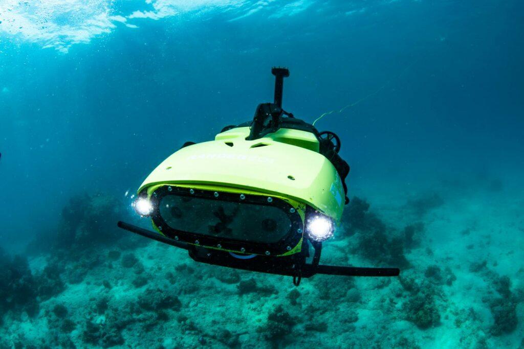 LarvalBot underwater