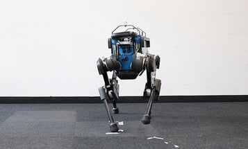 Artificial intelligence made this robot dog a very good boy