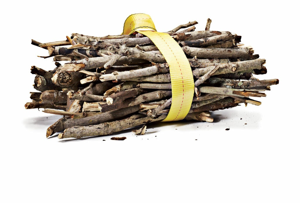 A bundle of sticks tied with a yellow rope.