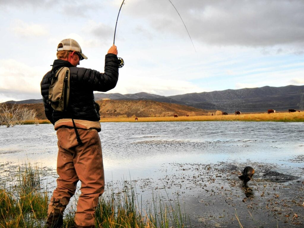 angler rance rathie trout fishing