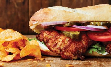 Eight great sandwiches to make with your wild game and fish