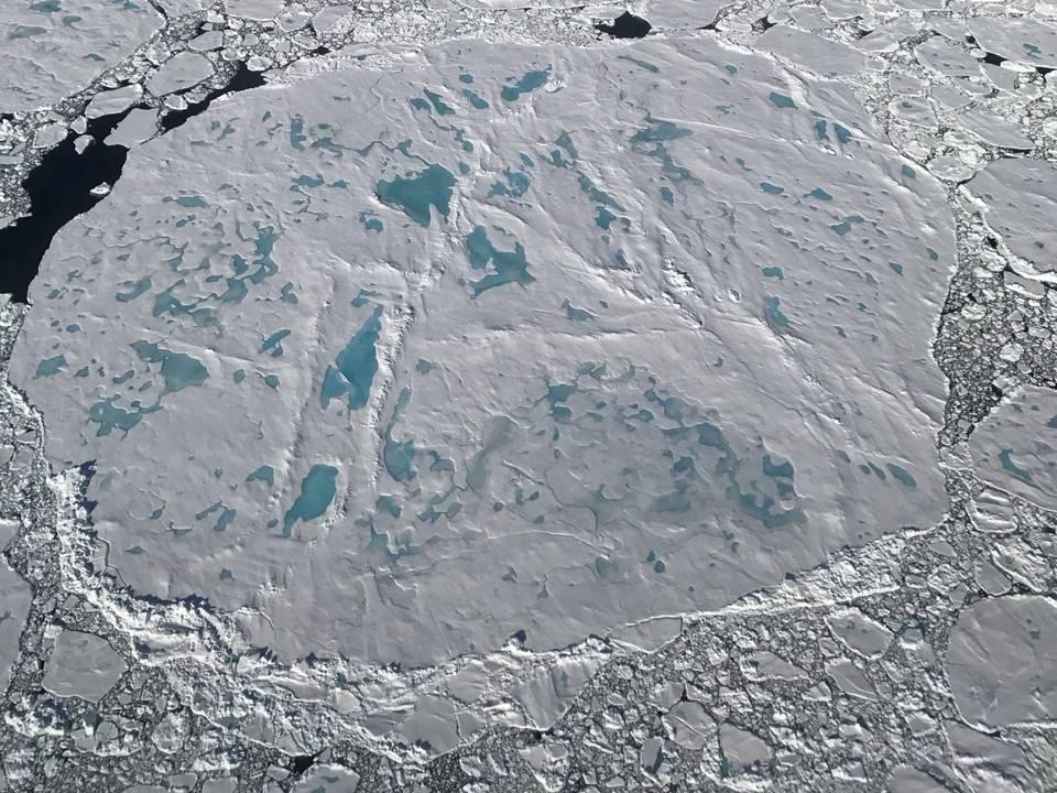 sea ice floe