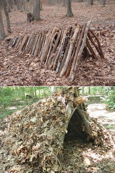 leaf hut shelter
