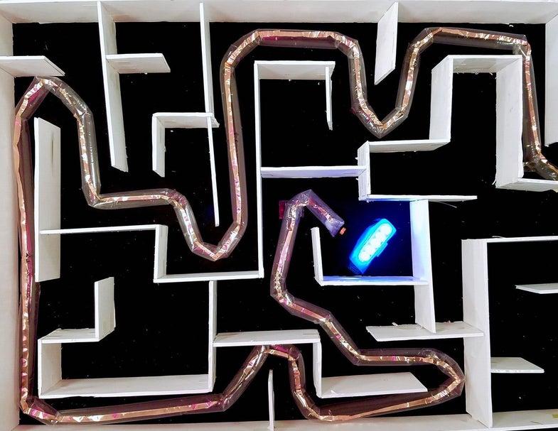 Soft plant-inspired robot navigates a maze