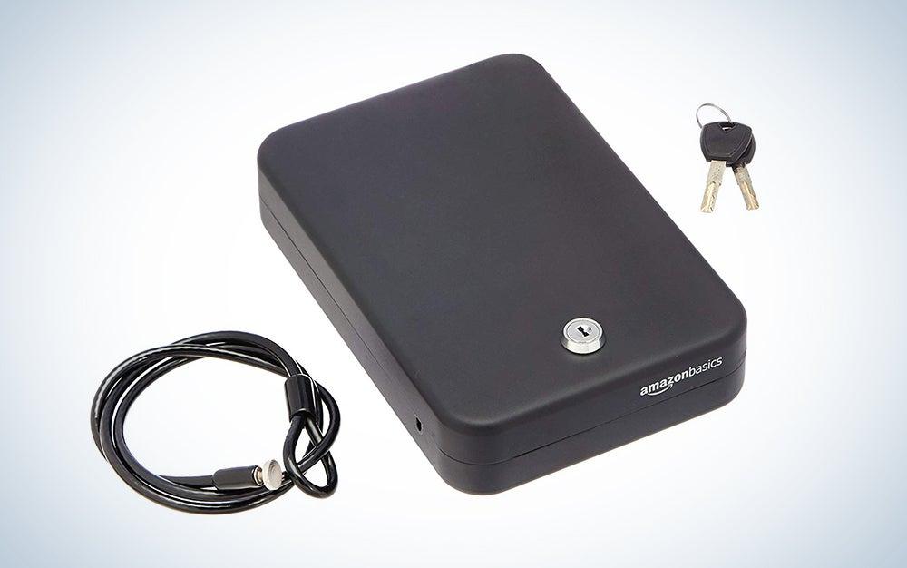 TSA-approved AmazonBasics Portable Security Case