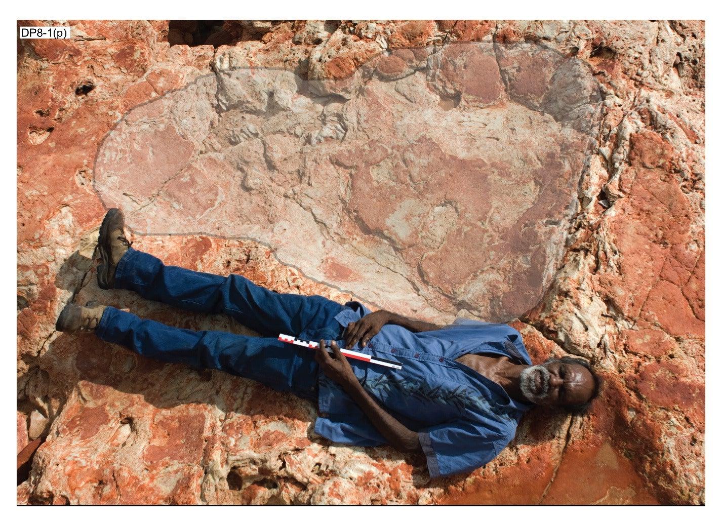 Sauroprint giant footprint