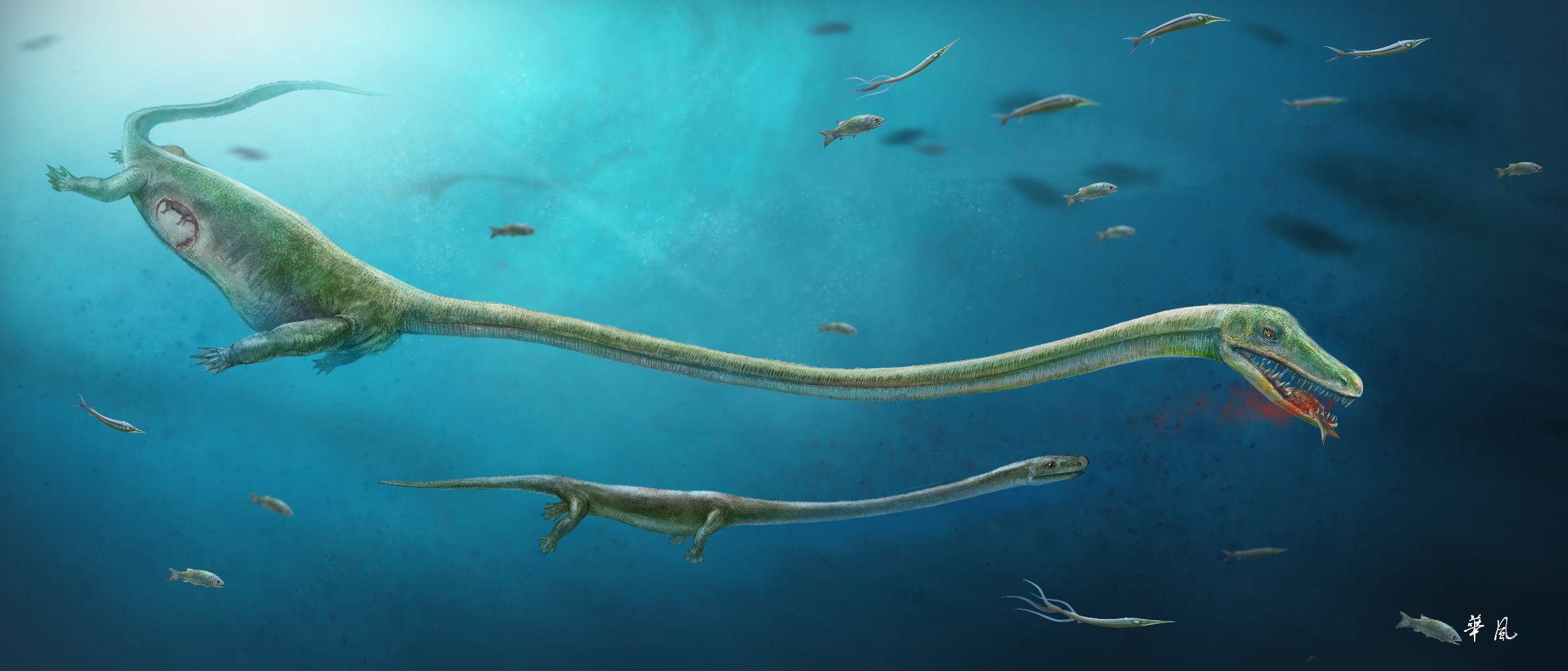 Crocodile's ancient cousin defied family norms, gave birth to live young