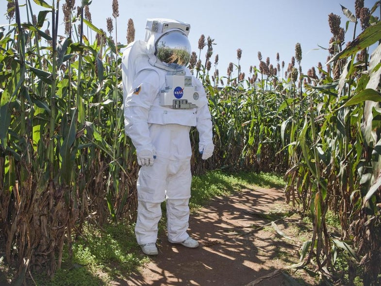 NASA bets the farm on the long-term viability of space agriculture