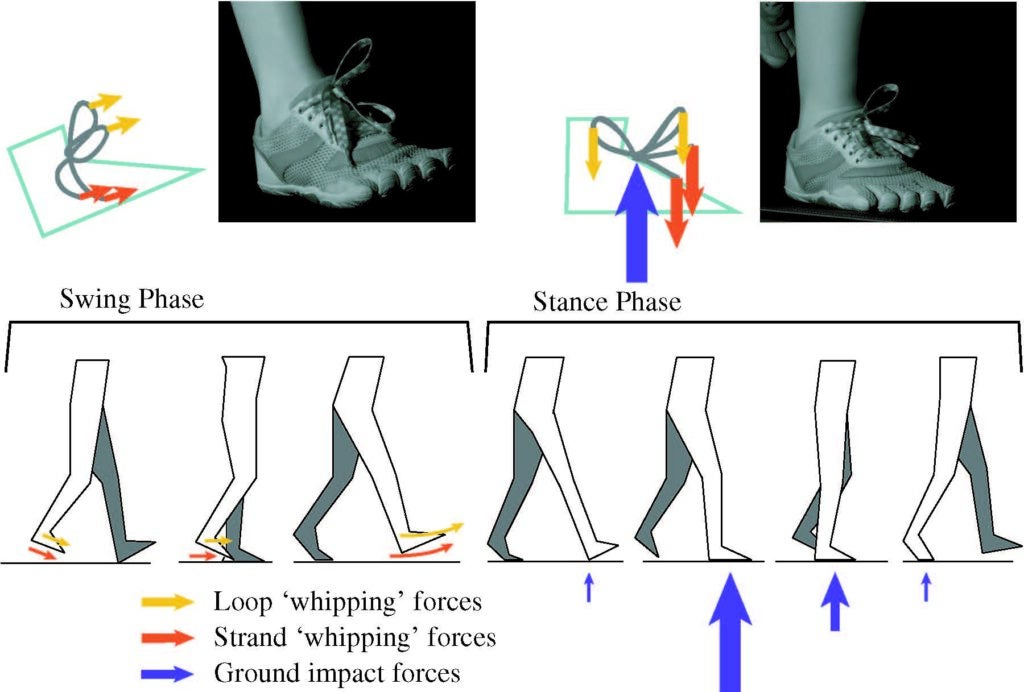 forces against shoelaces