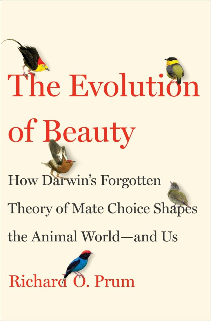 cover evolution of beauty