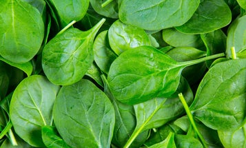 How to turn a spinach leaf into a human heart