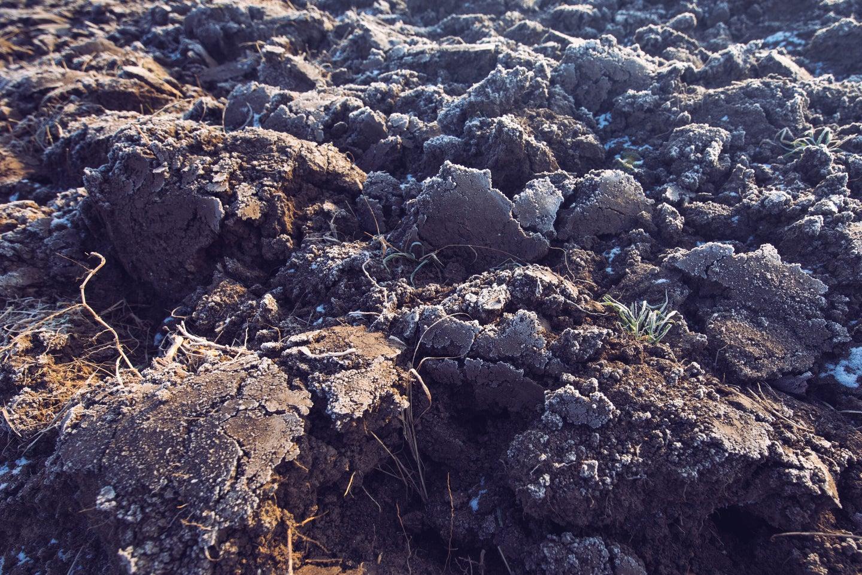 frost frozen ground crack