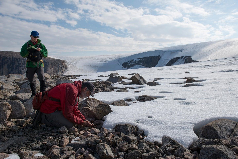 Baffin Island glacier retreat research