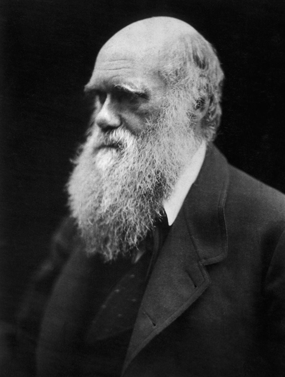 Charles Darwin wrote enough one-liners to fill a burn book