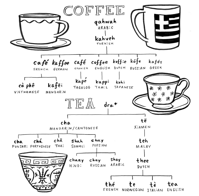 coffee and tea language flowchart