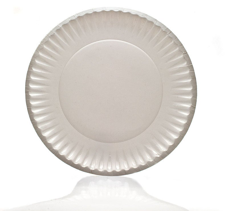 Paper Plate Reflector