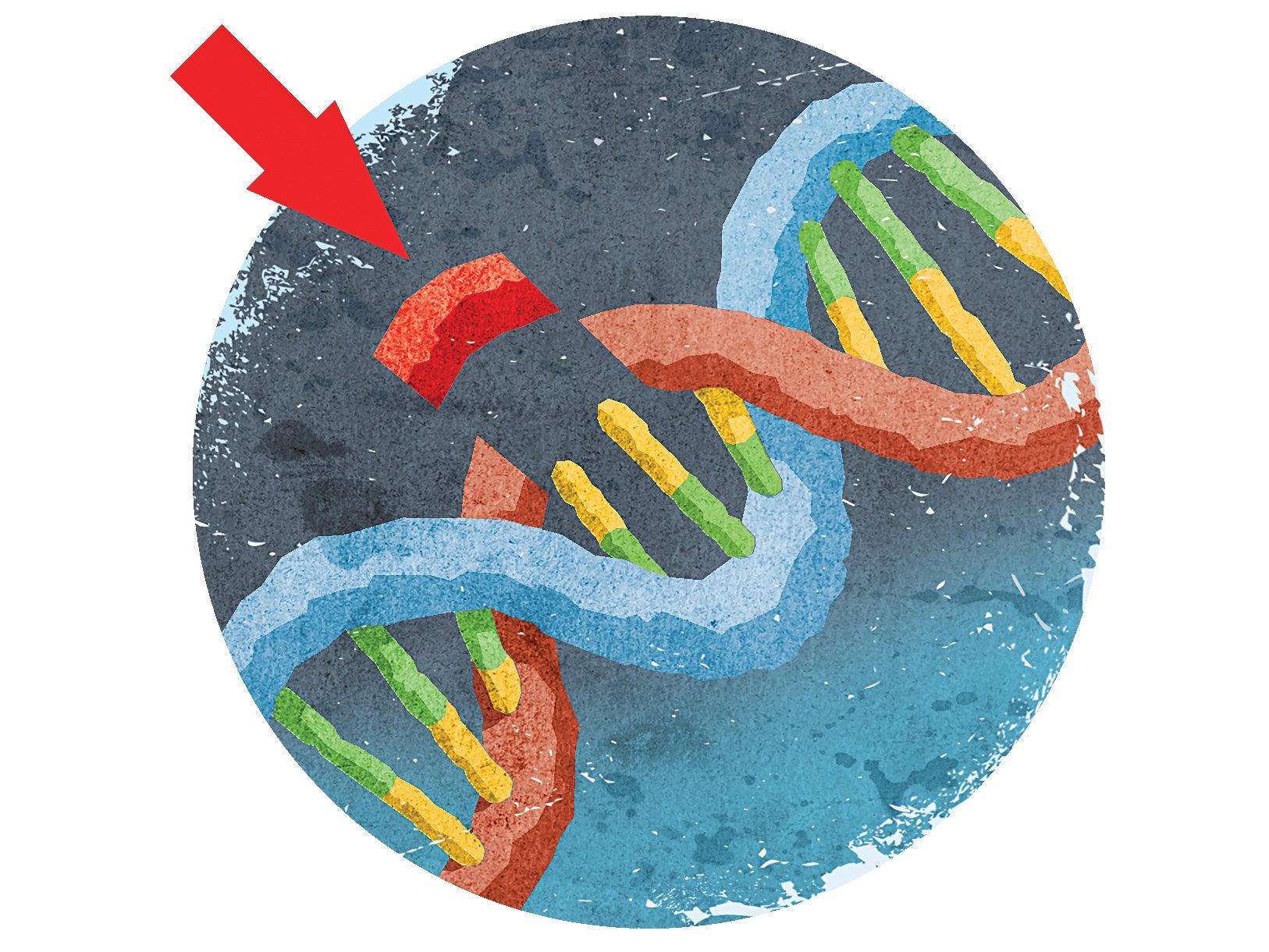Big Idea: CRISPR Remakes The World