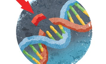 Two women just won the Nobel Prize for their work on the gene-editing technique CRISPR