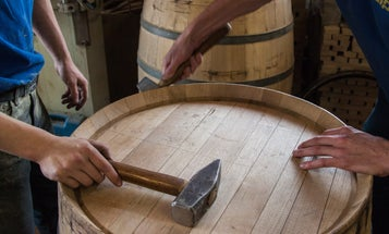 Love the taste of whiskey? Thank an oak tree