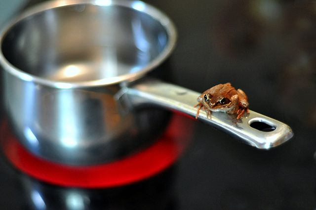 Boiling frog climate change Twitter analysis